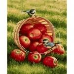 Картины по номерам - Хрустящие яблочки (в коробке)