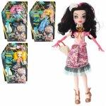 Кукла Ardana Girl, шарнирная с аксессуарами