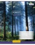 """Тетрадь А5/12 листов в линию """"Magic Forest"""""""