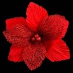 Пуансеттия с клипом, красная