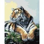 """Роспись по номерам """"Гордый тигр"""""""