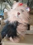 Мягкая игрушка Собачка 36 см
