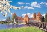 """Пазлы 1000 """"Замок Тракай, Литва"""""""